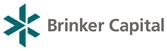 BrinkerCap167x51